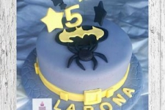 Kids Cakes 012